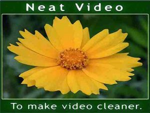 Neat Video 5.4.3 Crack + License Key With Patch Premiere Lifetime {Torrent}
